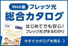 Web版 フレッツ光総合カタログ 料金プランや各種オプションサービスが詳しく確認いただけます。